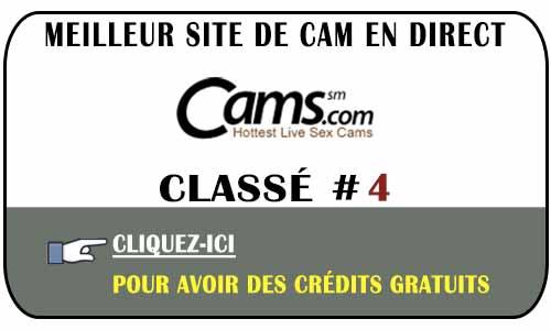 Avis sur Cams en Suisse, Belgique ou France