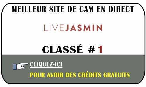 Avis sur LiveJasmin en Suisse, Belgique ou France