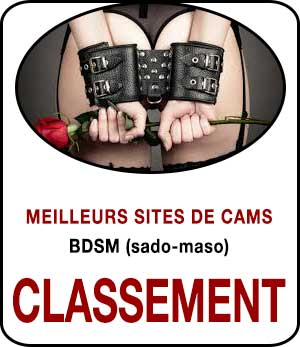 Chat BDSM avec webcam